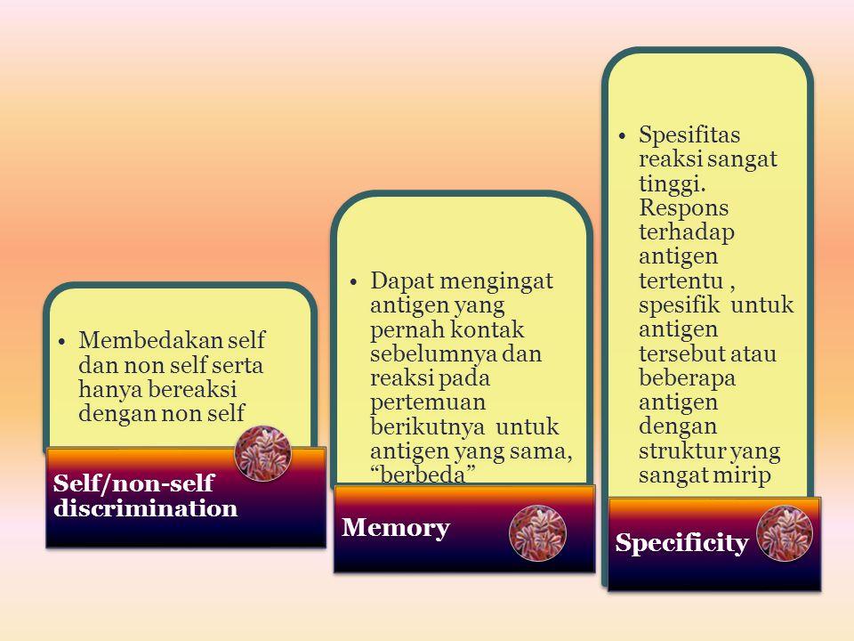 Membedakan self dan non self serta hanya bereaksi dengan non self Self/non-self discrimination Dapat mengingat antigen yang pernah kontak sebelumnya d