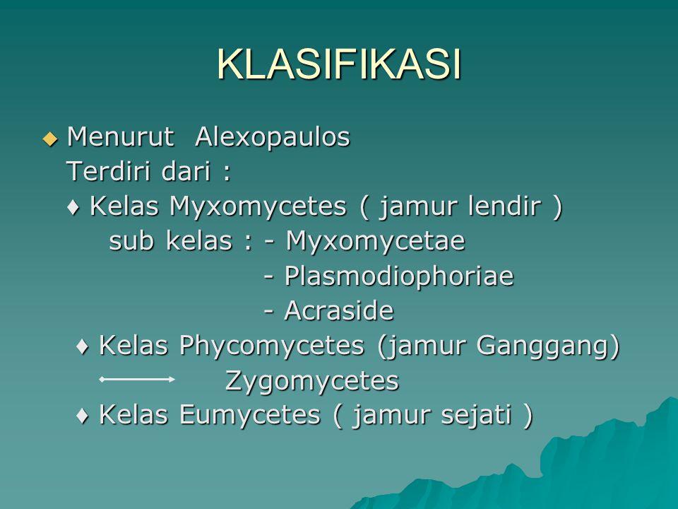 KLASIFIKASI  Menurut Alexopaulos Terdiri dari : ♦ Kelas Myxomycetes ( jamur lendir ) sub kelas : - Myxomycetae - Plasmodiophoriae - Plasmodiophoriae