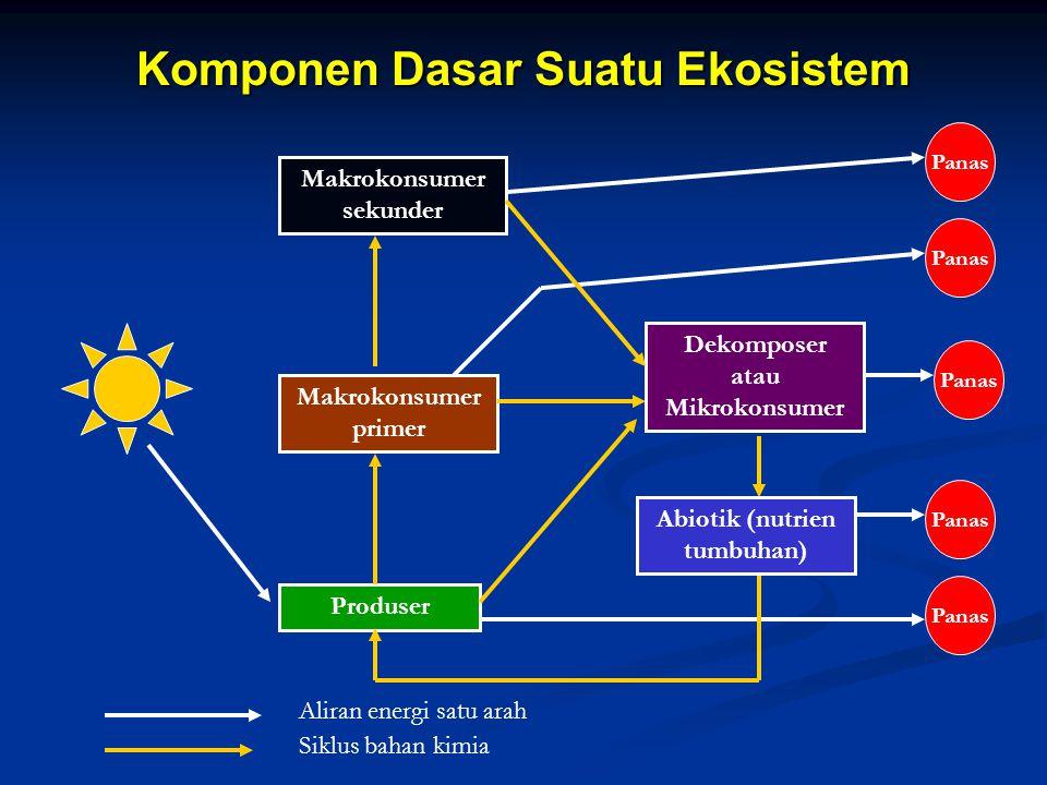 Komponen Dasar Suatu Ekosistem Makrokonsumer sekunder Makrokonsumer primer Produser Dekomposer atau Mikrokonsumer Abiotik (nutrien tumbuhan) Panas Ali