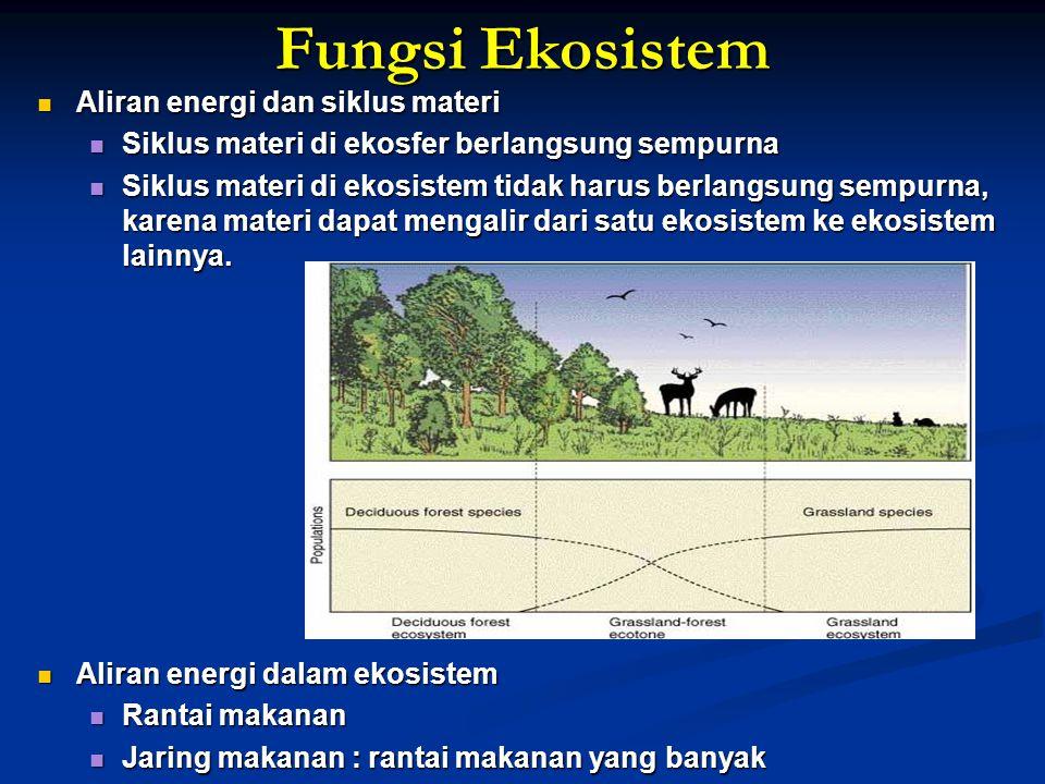 Fungsi Ekosistem Aliran energi dan siklus materi Aliran energi dan siklus materi Siklus materi di ekosfer berlangsung sempurna Siklus materi di ekosfe