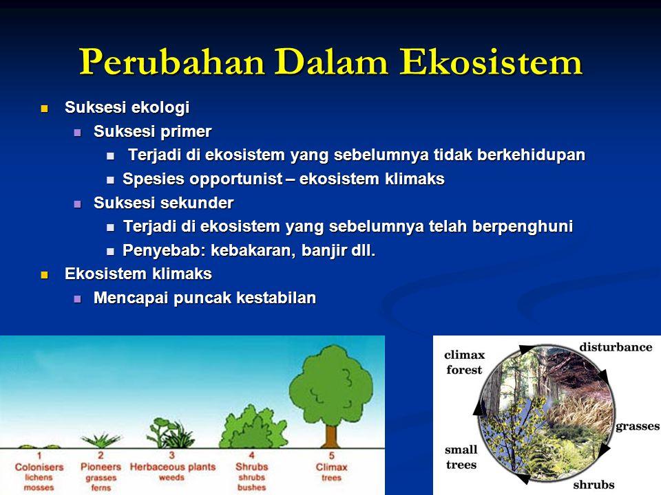Perubahan Dalam Ekosistem Suksesi ekologi Suksesi ekologi Suksesi primer Suksesi primer Terjadi di ekosistem yang sebelumnya tidak berkehidupan Terjad
