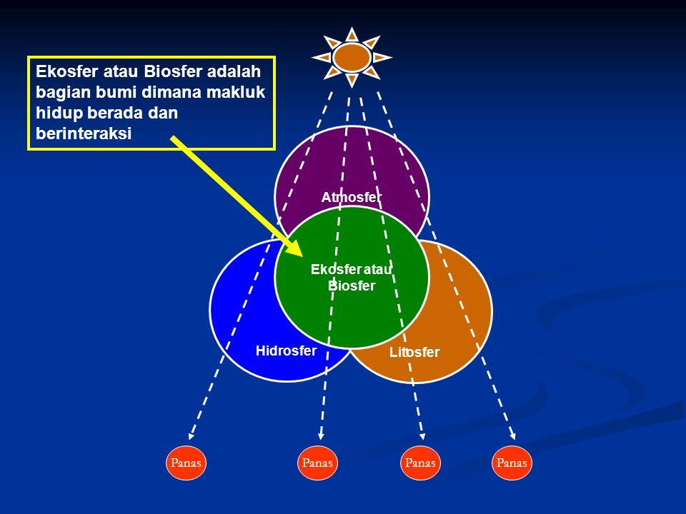 Hidrosfer Atmosfer Litosfer Ekosfer atau Biosfer Panas Ekosfer atau Biosfer adalah bagian bumi dimana makluk hidup berada dan berinteraksi