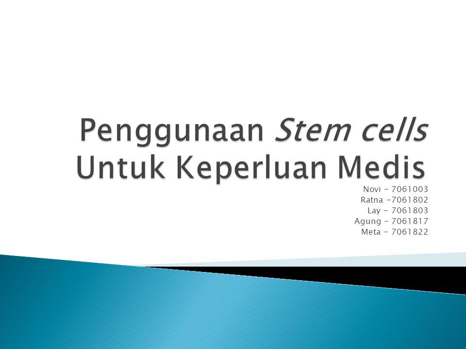Stem Cells:  Suatu sel prekursor yang berpotensi untuk berkembang menjadi berbagai macam sel yang berbeda (sel beta pancreas, kondrosit, sel neuron, dll).