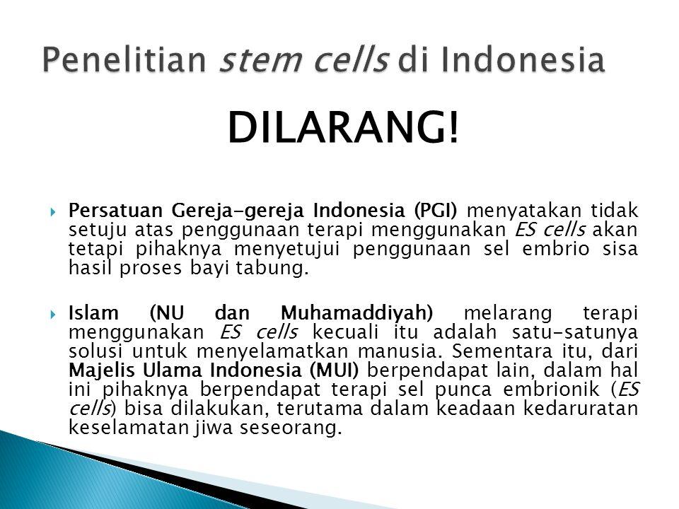 Konferensi Waligereja Indonesia (KWI) melarang secara tegas pengambilan sel embrio manusia untuk keperluan apapun, termasuk di dalamnya tidak mentoleransi penggunaan sel embrio sisa proses bayi tabung karena apa pun bentuknya mereka adalah cikal bakal manusia yang mempunya hak untuk hidup.