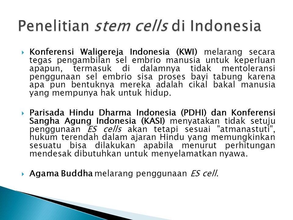  Sedangkan untuk penggunaan adult stem cells untuk terapi disetujui oleh para pemuka agama Islam, Katolik dan Kristen.