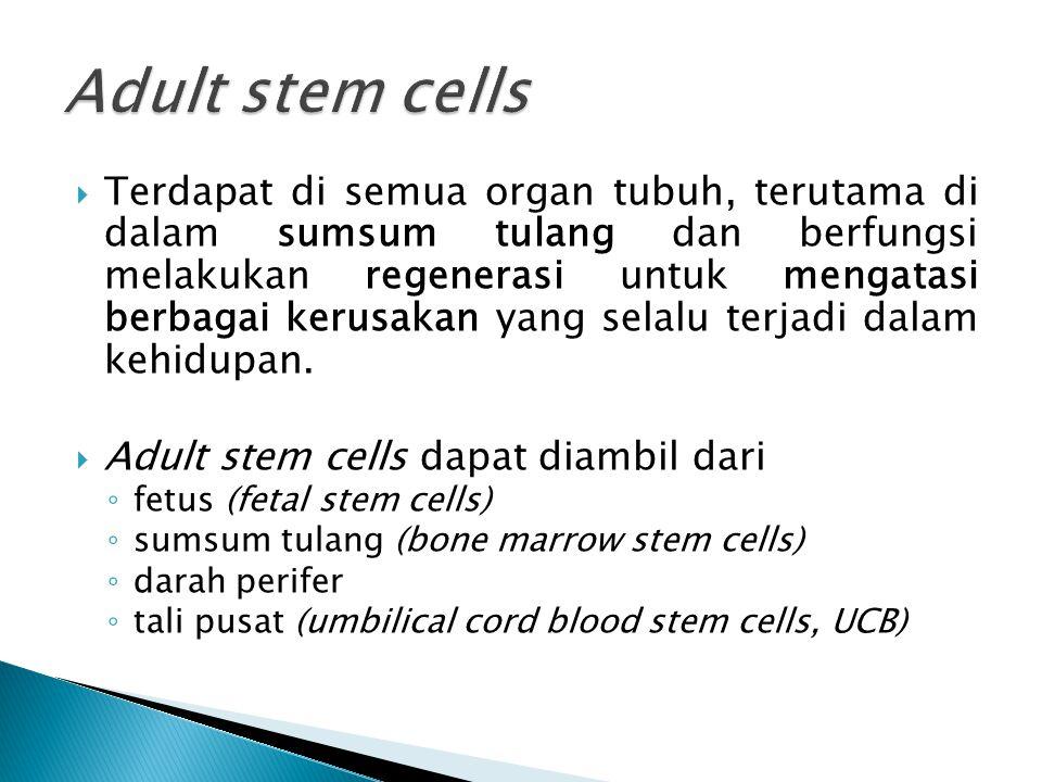  Pembuatan sel dan jaringan untuk terapi medis.