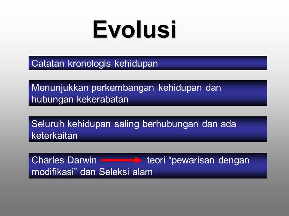 Evolusi Catatan kronologis kehidupan Menunjukkan perkembangan kehidupan dan hubungan kekerabatan Seluruh kehidupan saling berhubungan dan ada keterkaitan Charles Darwin teori pewarisan dengan modifikasi dan Seleksi alam