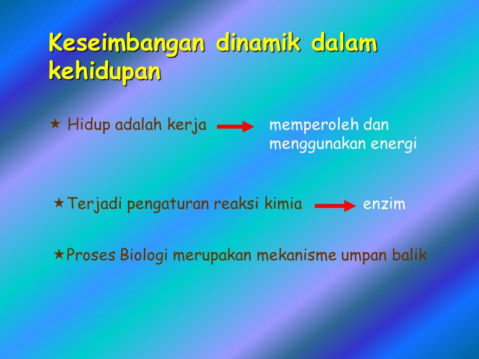 Keseimbangan dinamik dalam kehidupan  Hidup adalah kerjamemperoleh dan menggunakan energi  Terjadi pengaturan reaksi kimia enzim  Proses Biologi me