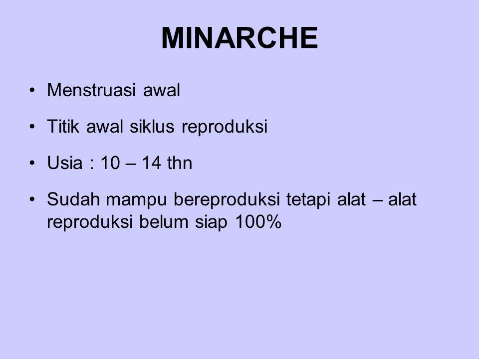 MINARCHE Menstruasi awal Titik awal siklus reproduksi Usia : 10 – 14 thn Sudah mampu bereproduksi tetapi alat – alat reproduksi belum siap 100%