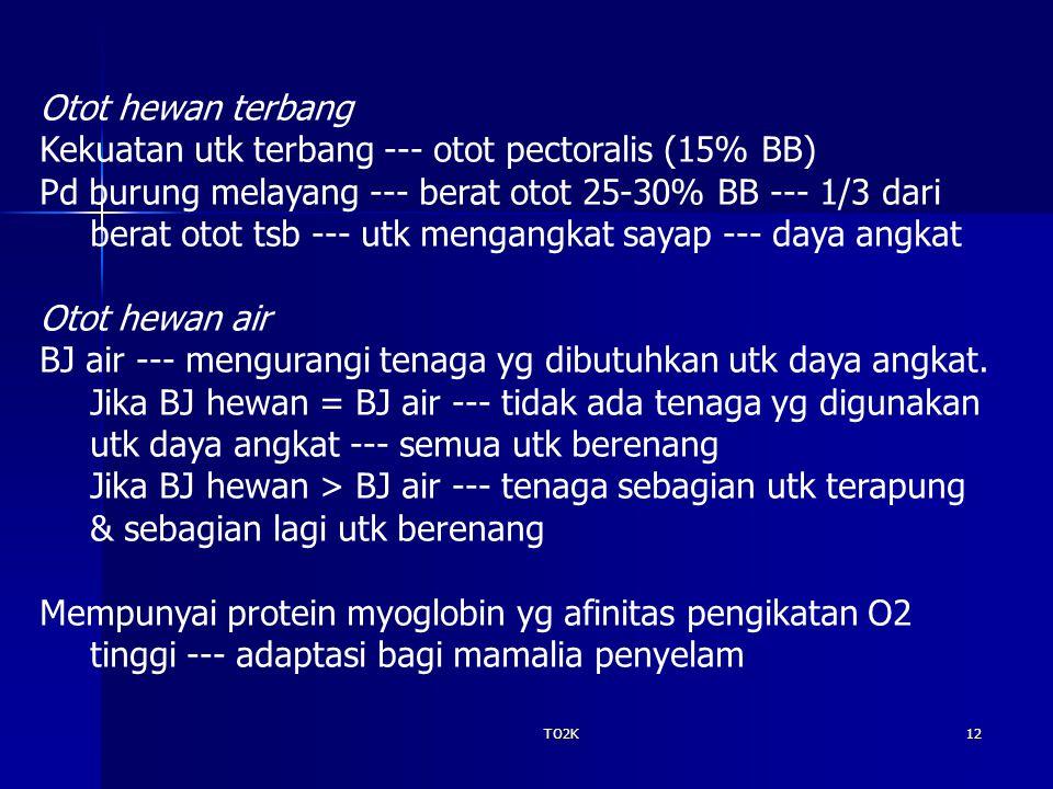 TO2K12 Otot hewan terbang Kekuatan utk terbang --- otot pectoralis (15% BB) Pd burung melayang --- berat otot 25-30% BB --- 1/3 dari berat otot tsb --- utk mengangkat sayap --- daya angkat Otot hewan air BJ air --- mengurangi tenaga yg dibutuhkan utk daya angkat.