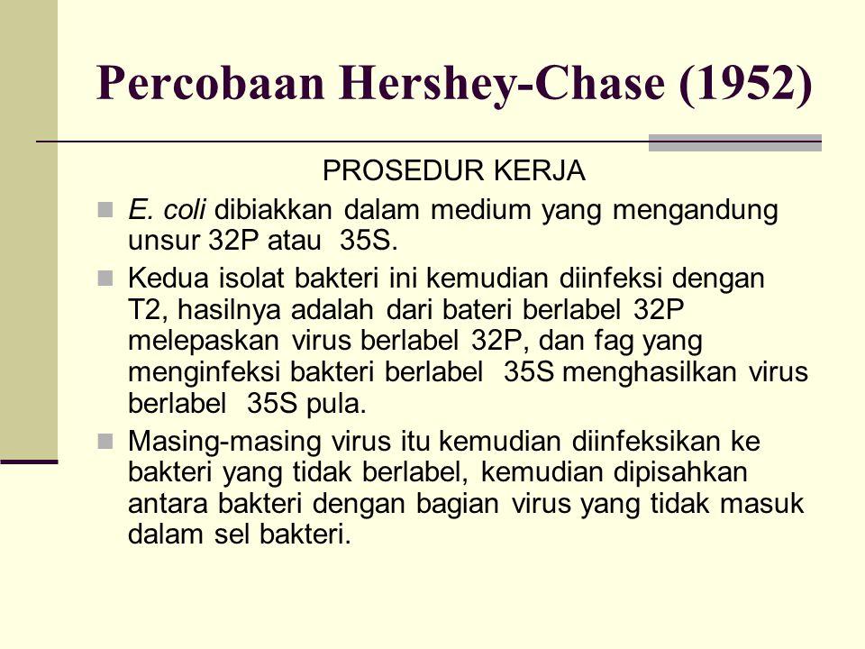 Percobaan Hershey-Chase (1952) PROSEDUR KERJA E. coli dibiakkan dalam medium yang mengandung unsur 32P atau 35S. Kedua isolat bakteri ini kemudian dii