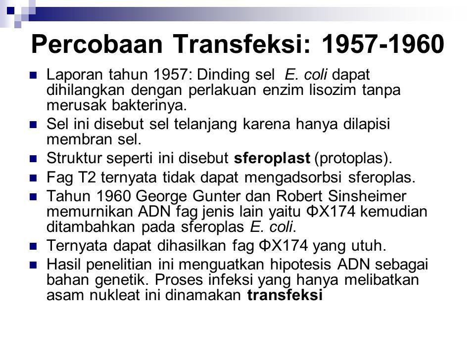 Percobaan Transfeksi: 1957-1960 Laporan tahun 1957: Dinding sel E. coli dapat dihilangkan dengan perlakuan enzim lisozim tanpa merusak bakterinya. Sel