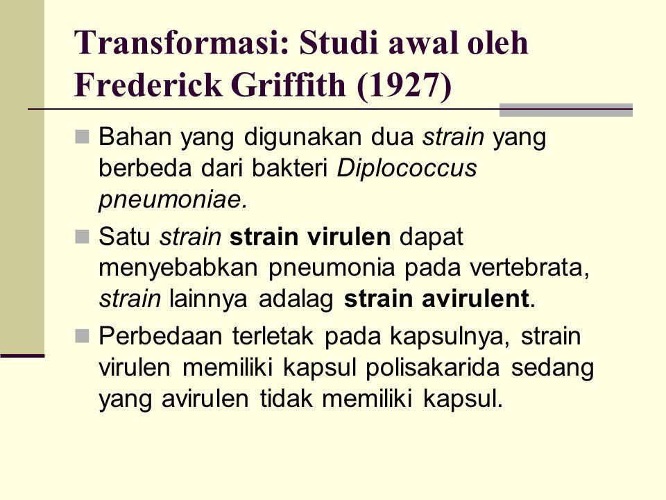 Transformasi: Studi awal oleh Frederick Griffith (1927) Bahan yang digunakan dua strain yang berbeda dari bakteri Diplococcus pneumoniae. Satu strain