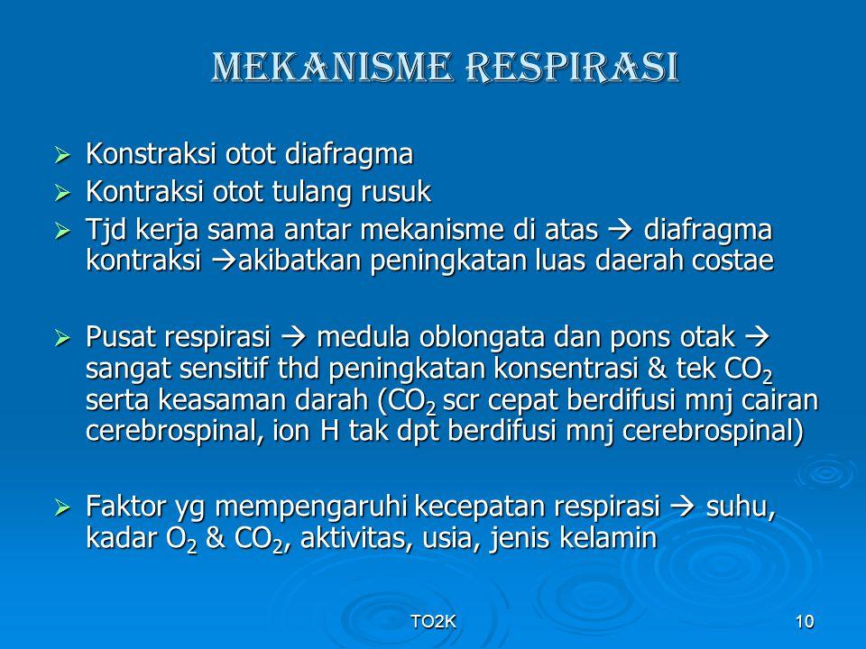 TO2K10 MEKANISME RESPIRASI  Konstraksi otot diafragma  Kontraksi otot tulang rusuk  Tjd kerja sama antar mekanisme di atas  diafragma kontraksi 