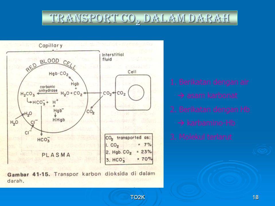 TO2K18 TRANSPORT CO 2 DALAM DARAH 1. Berikatan dengan air  asam karbonat 2. Berikatan dengan Hb  karbamino-Hb 3. Molekul terlarut