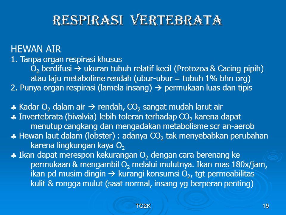 TO2K19 RESPIRASI VERTEBRATA HEWAN AIR 1. Tanpa organ respirasi khusus O 2 berdifusi  ukuran tubuh relatif kecil (Protozoa & Cacing pipih) atau laju m