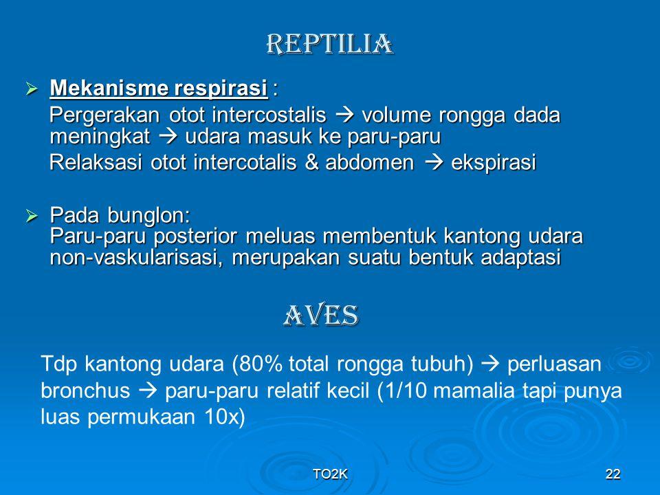 TO2K22 REpTILIA  Mekanisme respirasi : Pergerakan otot intercostalis  volume rongga dada meningkat  udara masuk ke paru-paru Pergerakan otot interc