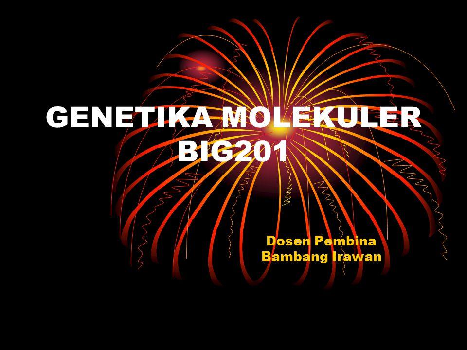 GENETIKA MOLEKULER BIG201 Dosen Pembina Bambang Irawan