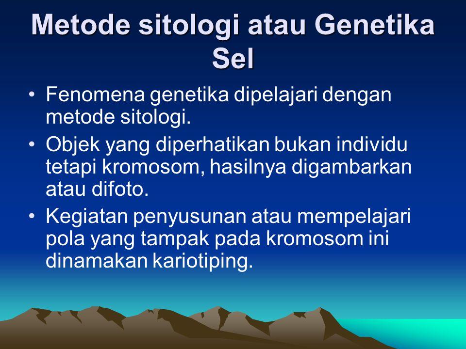 Metode sitologi atau Genetika Sel Fenomena genetika dipelajari dengan metode sitologi. Objek yang diperhatikan bukan individu tetapi kromosom, hasilny