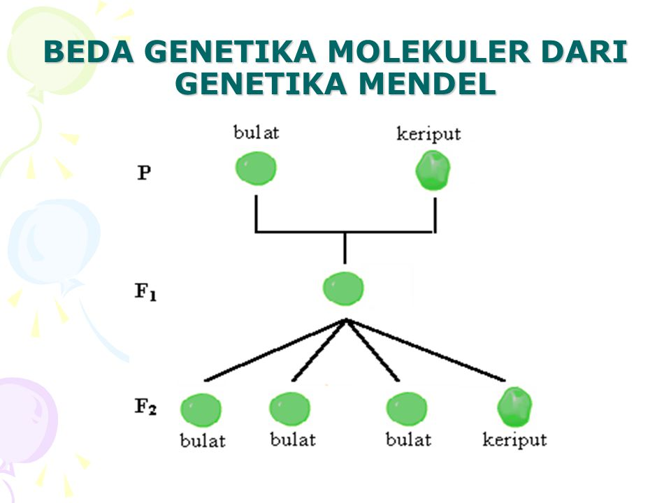 BEDA GENETIKA MOLEKULER DARI GENETIKA MENDEL