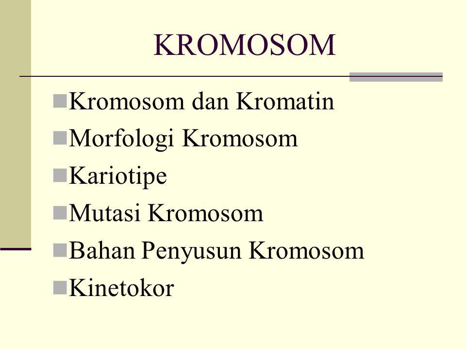 KROMOSOM Kromosom dan Kromatin Morfologi Kromosom Kariotipe Mutasi Kromosom Bahan Penyusun Kromosom Kinetokor
