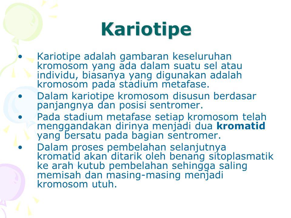 Kariotipe Kariotipe adalah gambaran keseluruhan kromosom yang ada dalam suatu sel atau individu, biasanya yang digunakan adalah kromosom pada stadium