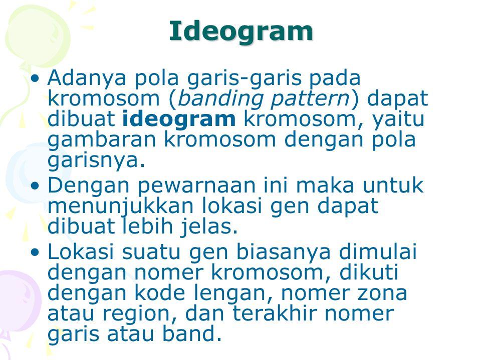 Ideogram Adanya pola garis-garis pada kromosom (banding pattern) dapat dibuat ideogram kromosom, yaitu gambaran kromosom dengan pola garisnya. Dengan