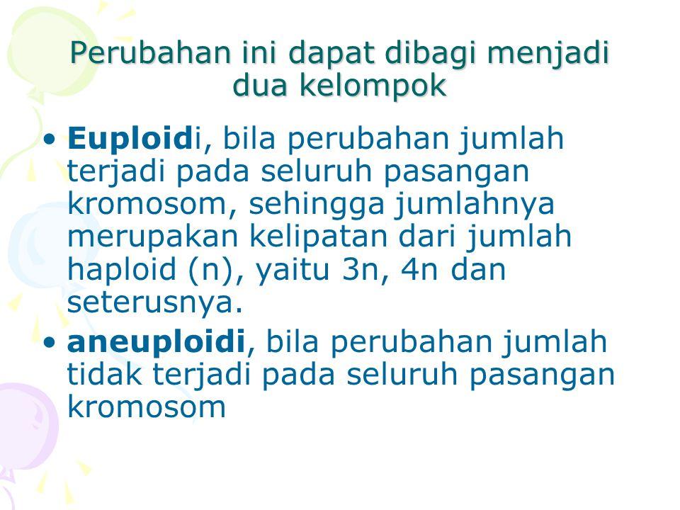 Perubahan ini dapat dibagi menjadi dua kelompok Euploidi, bila perubahan jumlah terjadi pada seluruh pasangan kromosom, sehingga jumlahnya merupakan k