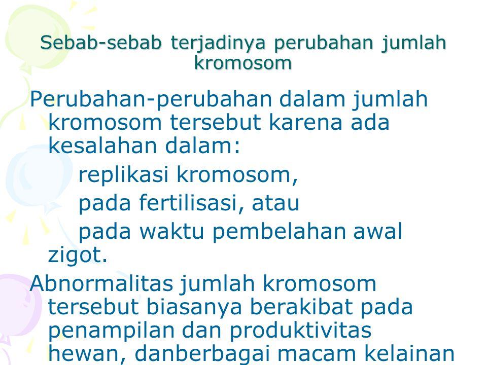 Sebab-sebab terjadinya perubahan jumlah kromosom Perubahan-perubahan dalam jumlah kromosom tersebut karena ada kesalahan dalam: replikasi kromosom, pa