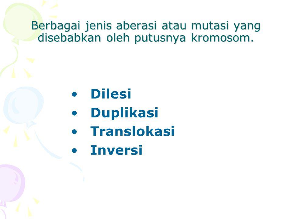 Berbagai jenis aberasi atau mutasi yang disebabkan oleh putusnya kromosom. Dilesi Duplikasi Translokasi Inversi
