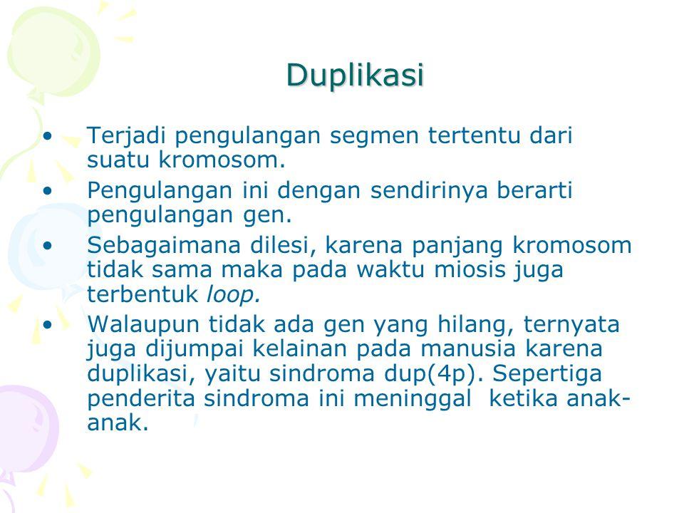 Duplikasi Terjadi pengulangan segmen tertentu dari suatu kromosom. Pengulangan ini dengan sendirinya berarti pengulangan gen. Sebagaimana dilesi, kare
