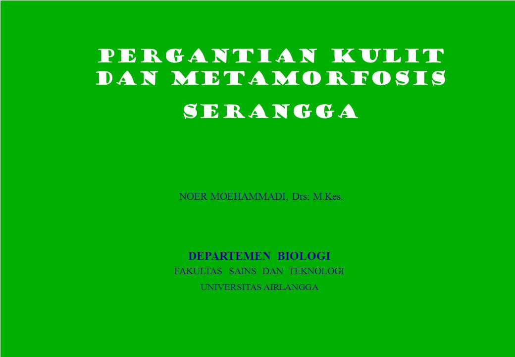 PERGANTIAN KULIT dan METAMORFOSIS SERANGGA NOER MOEHAMMADI, Drs; M.Kes. DEPARTEMEN BIOLOGI FAKULTAS SAINS DAN TEKNOLOGI UNIVERSITAS AIRLANGGA PERGANTI