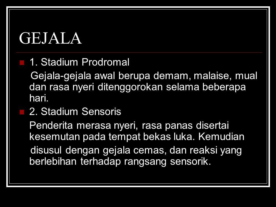 GEJALA 1. Stadium Prodromal Gejala-gejala awal berupa demam, malaise, mual dan rasa nyeri ditenggorokan selama beberapa hari. 2. Stadium Sensoris Pend