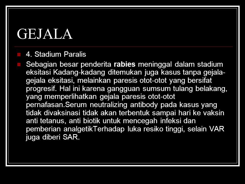 GEJALA 4. Stadium Paralis Sebagian besar penderita rabies meninggal dalam stadium eksitasi Kadang-kadang ditemukan juga kasus tanpa gejala- gejala eks