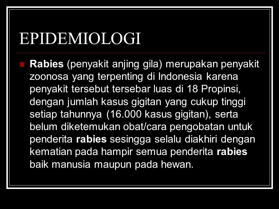 EPIDEMIOLOGI Rabies (penyakit anjing gila) merupakan penyakit zoonosa yang terpenting di Indonesia karena penyakit tersebut tersebar luas di 18 Propin