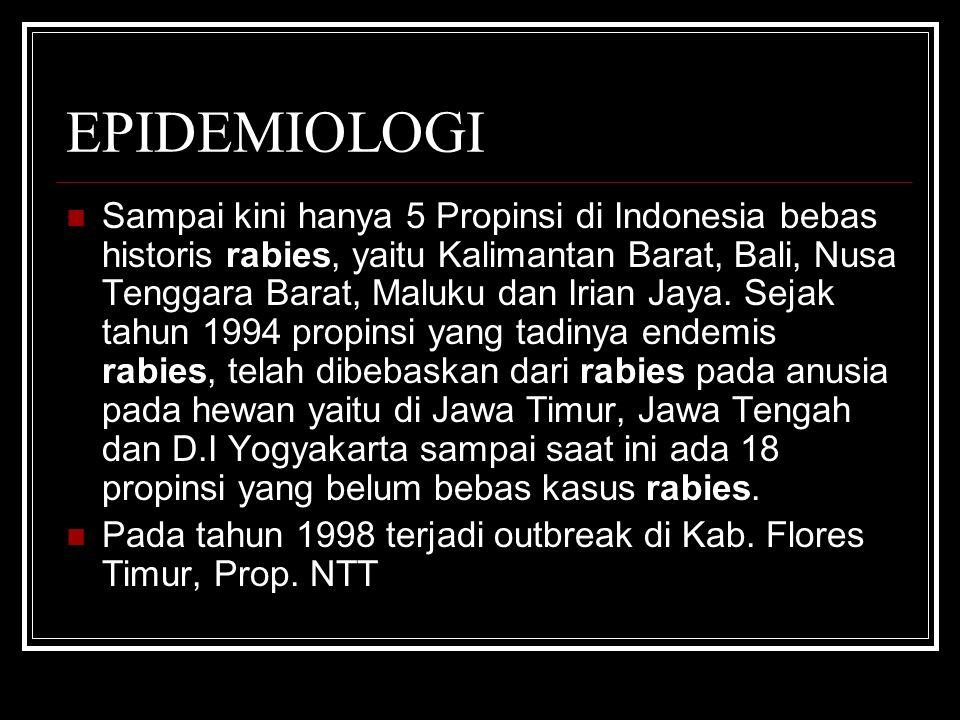 EPIDEMIOLOGI Sampai kini hanya 5 Propinsi di Indonesia bebas historis rabies, yaitu Kalimantan Barat, Bali, Nusa Tenggara Barat, Maluku dan Irian Jaya