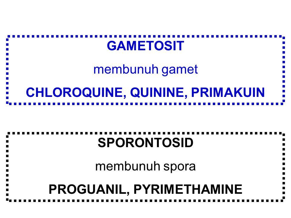 GAMETOSIT membunuh gamet CHLOROQUINE, QUININE, PRIMAKUIN SPORONTOSID membunuh spora PROGUANIL, PYRIMETHAMINE