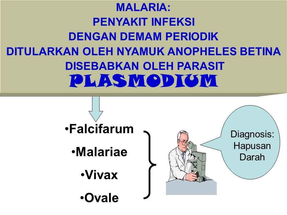 MALARIA: PENYAKIT INFEKSI DENGAN DEMAM PERIODIK DITULARKAN OLEH NYAMUK ANOPHELES BETINA DISEBABKAN OLEH PARASIT PLASMODIUM Falcifarum Malariae Vivax O