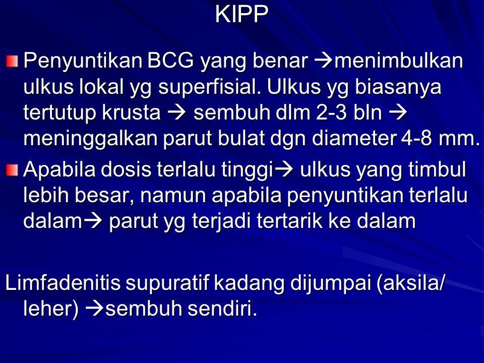 KIPP Penyuntikan BCG yang benar  menimbulkan ulkus lokal yg superfisial. Ulkus yg biasanya tertutup krusta  sembuh dlm 2-3 bln  meninggalkan parut