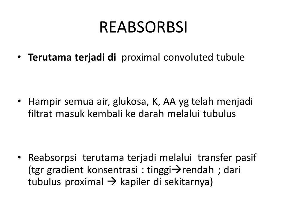 REABSORBSI Terutama terjadi di proximal convoluted tubule Hampir semua air, glukosa, K, AA yg telah menjadi filtrat masuk kembali ke darah melalui tub