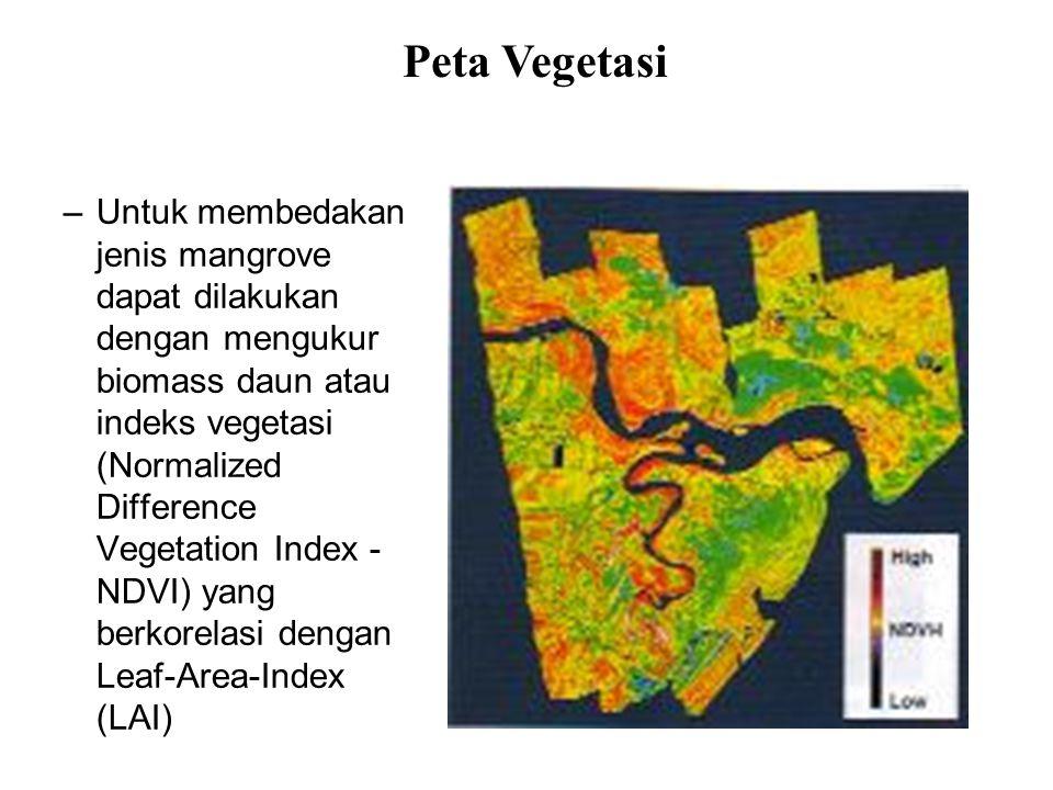 –Untuk membedakan jenis mangrove dapat dilakukan dengan mengukur biomass daun atau indeks vegetasi (Normalized Difference Vegetation Index - NDVI) yan