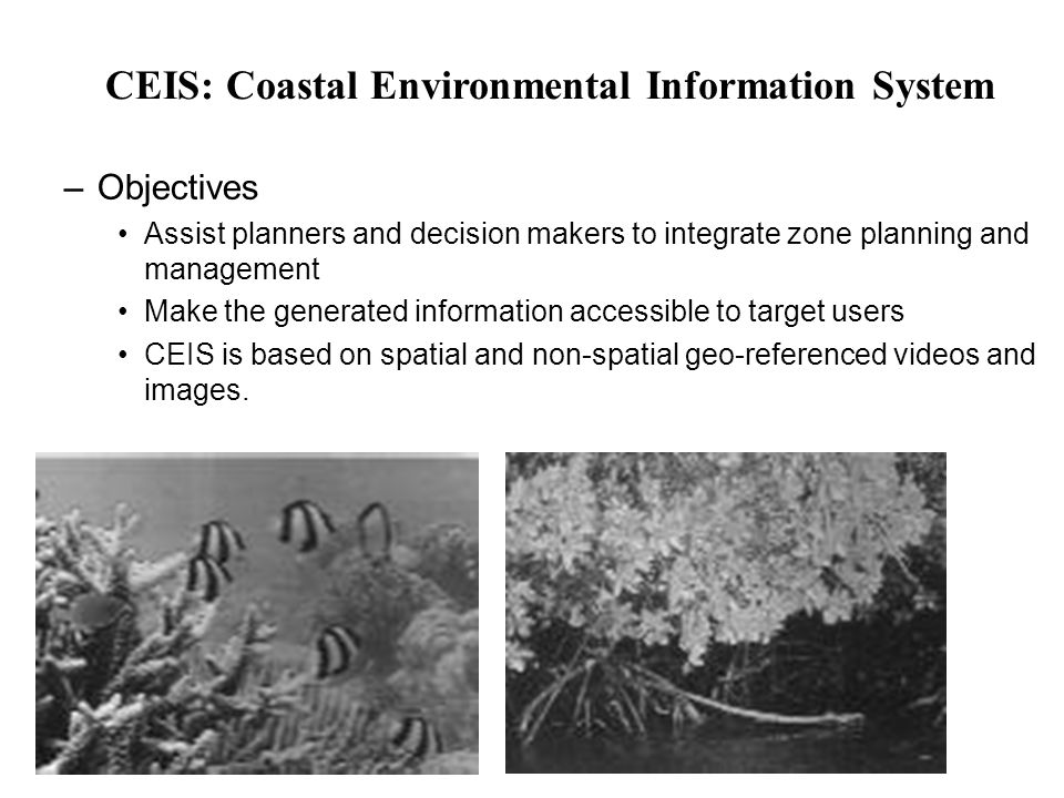 –Geographic themes - Several data layers - multitemporal: Land terrain Underwater terrain Land Use Land cover Marine habitats Marine activities Environmental Management Projects Hydrology Infrastructure Socio-economic profile Administrative boundaries 0-100 m elevation on land, 0-23 m nearshore area, up to 15 km seaward data were collecting using boat covering and GPS technology Diversity of coral, algae and sea grass and habitat structure were collected by scuba divers CEIS Data Development