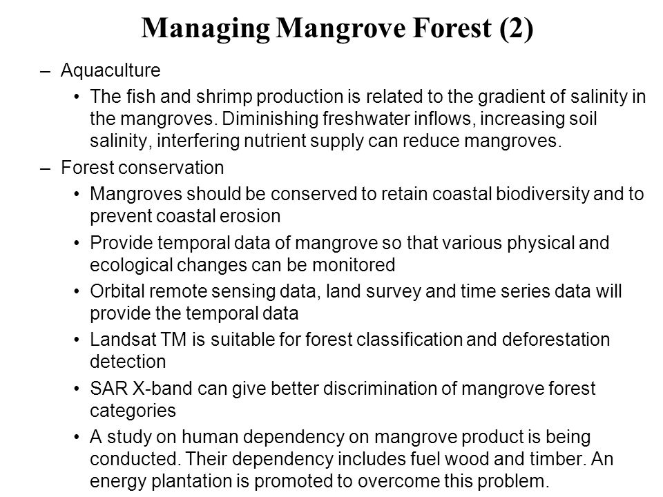–Aquaculture The fish and shrimp production is related to the gradient of salinity in the mangroves. Diminishing freshwater inflows, increasing soil s