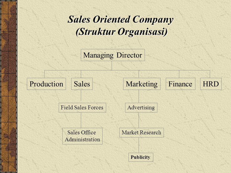 Sales Oriented Company (Struktur Organisasi) ProductionSalesFinanceHRD Field Sales Forces Sales Office Administration Managing Director Advertising Market Research Publicity Marketing