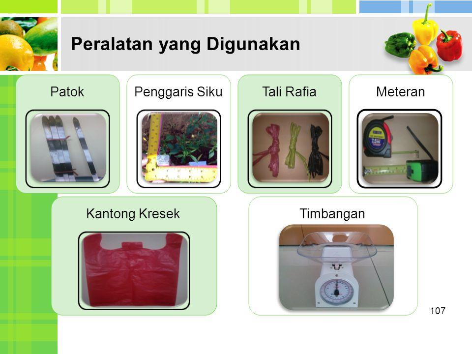Peralatan yang Digunakan 107 PatokPenggaris SikuTali RafiaMeteran Kantong KresekTimbangan