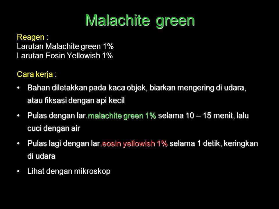 Malachite green Reagen : Larutan Malachite green 1% Larutan Eosin Yellowish 1% Cara kerja : Bahan diletakkan pada kaca objek, biarkan mengering di uda