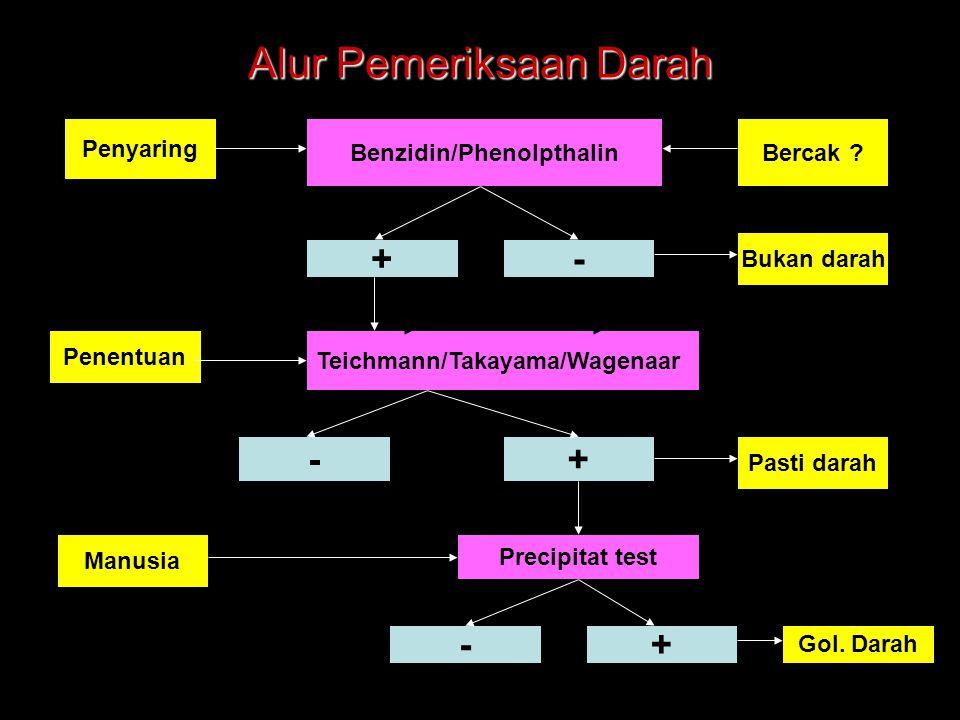 Alur Pemeriksaan Darah Bercak ? Penyaring +- Teichmann/Takayama/Wagenaar Bukan darah Pasti darah Benzidin/Phenolpthalin Penentuan Precipitat test Manu