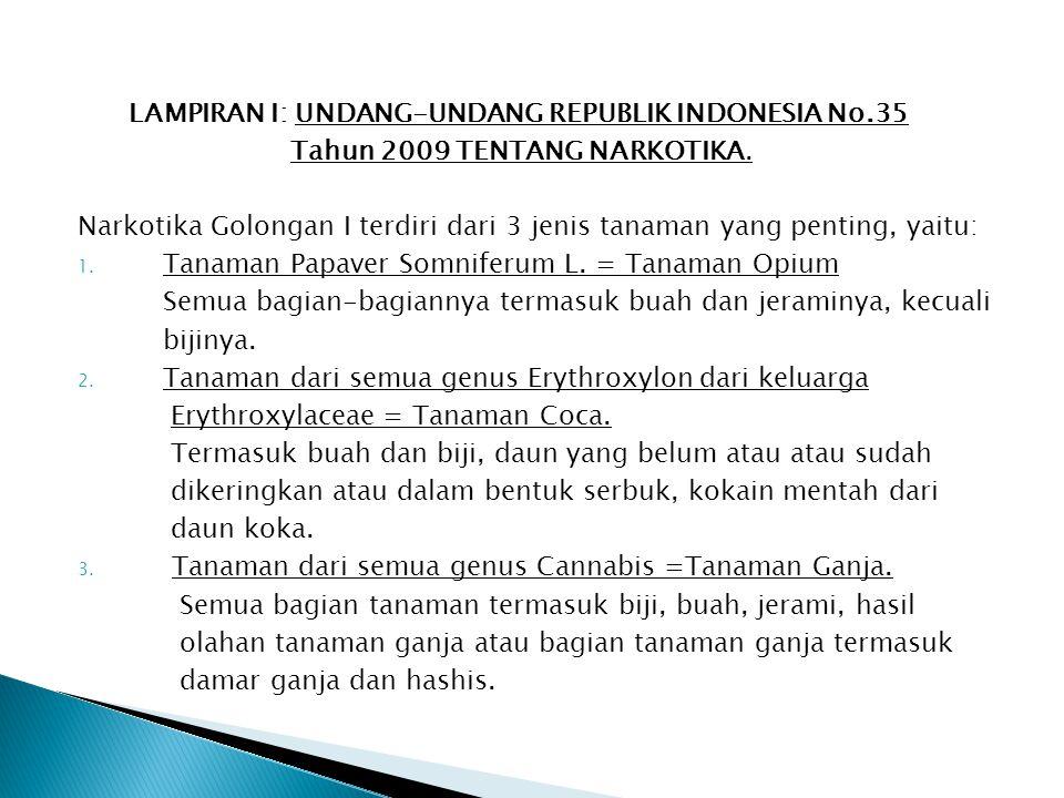 LAMPIRAN I: UNDANG-UNDANG REPUBLIK INDONESIA No.35 Tahun 2009 TENTANG NARKOTIKA. Narkotika Golongan I terdiri dari 3 jenis tanaman yang penting, yaitu