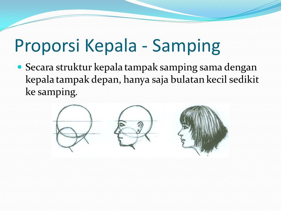 Proporsi Kepala - Samping Secara struktur kepala tampak samping sama dengan kepala tampak depan, hanya saja bulatan kecil sedikit ke samping.