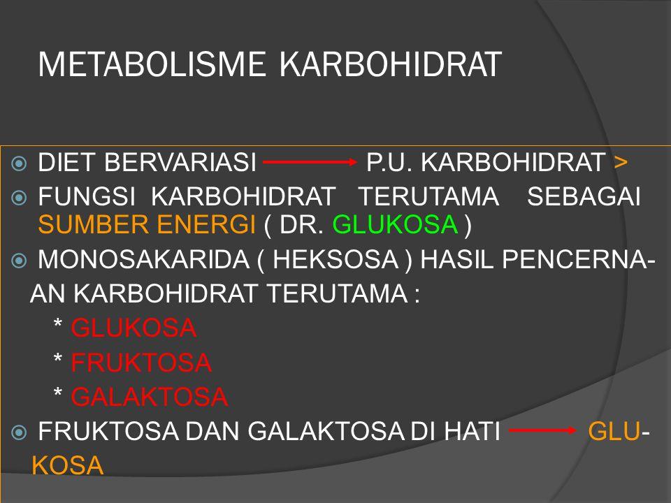  DIET BERVARIASI P.U. KARBOHIDRAT >  FUNGSI KARBOHIDRAT TERUTAMA SEBAGAI SUMBER ENERGI ( DR. GLUKOSA )  MONOSAKARIDA ( HEKSOSA ) HASIL PENCERNA- AN